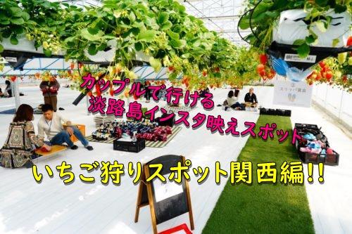 いちご狩りスポット関西編!!カップルで行ける淡路島インスタ映えスポット3